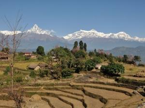 Panchase trek Makanpur