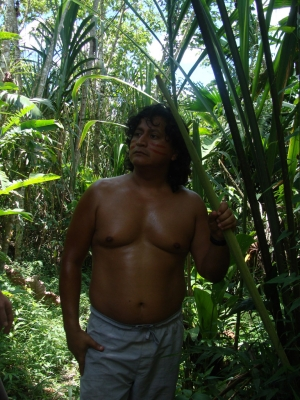 Local in amazon rainforest